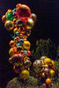 Towering over you is the 20 foot Polyvitro Chandelier made of glass balls stacked on top of each other.  Sculpture by Chihuly